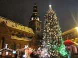 Kleine Geschichte des Weihnachtsbaumes