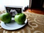 Ein gesunder Darm, ein gesundes Kind: Wie die Darmflora das Immunsystem des Ungeborenen beeinflusst