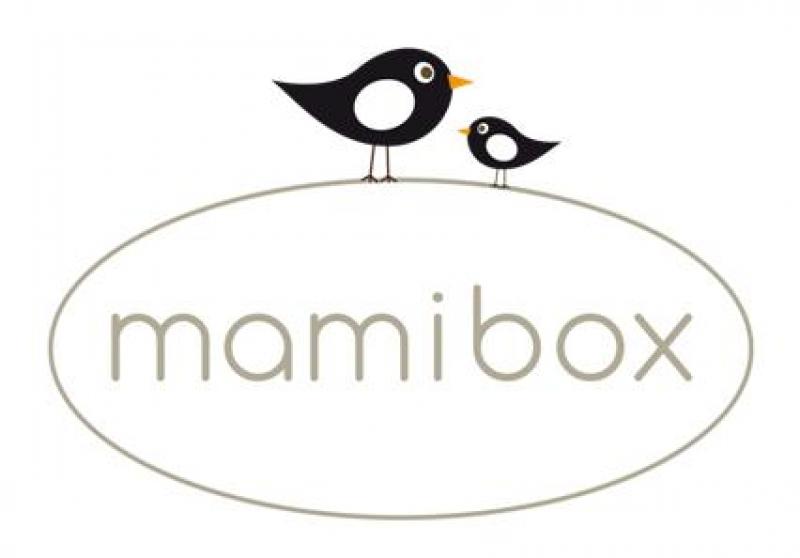 Mamibox Uberraschung Und Warenproben Fur Mutter Und Baby Wunschfee
