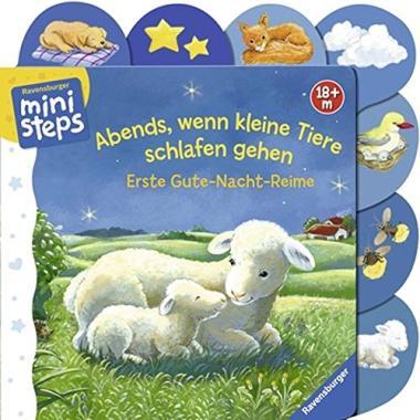 Das Buch - Abends, wenn kleine Tiere schlafen gehen - bestellen