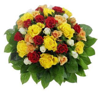 Den Rosenstrauss aus 36 bunten Rosen mit 7-Tage-Frischegarantie kaufen